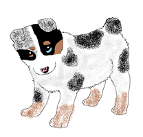 husky/aussie mix free adoptable puppy 4 closed by Angelwolf-95