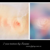 Rose textures by Susana by susana454572