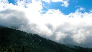 Forest Mountains in the Clouds by Techdrakonic