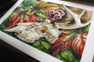 skull and leaves by NikaSamarina