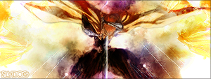 Bleach Signature Banner by Slydog0905
