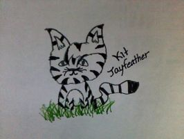 Kit Jayfeather by WarriorsBluestar12
