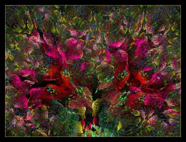 Where the hummingbirds meet... by Szellorozsa