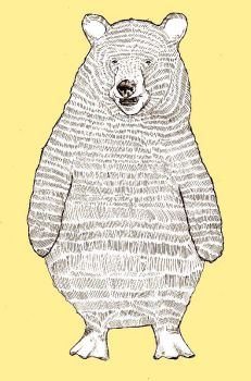 Bearguin by beaulivres