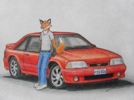 Two Foxes by wannabemustangjockey