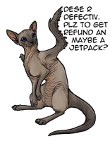 Hairless weasel-cat-bird -KD- by BasiliskZero