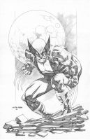 Wolverine Sta maria 2014 by mikitot