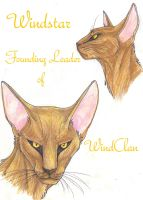 Windstar Faces by MudstarMord-Sith