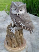 Screech Owl Carving - 1 of 5 by Zillaan