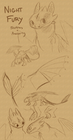 Toothless Sketches and Anatomy Notes by Stalcry