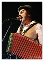 The Tiger Lillies by divagation