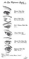 Eye Guide by nz13590