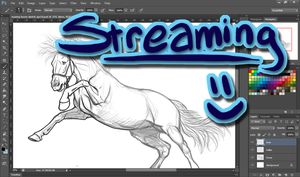 Streaming - Join.Me - offline by ShapeShifter314