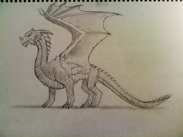 First Attempt at Drawing a Dragon by The-Barinade