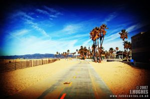 Venice Beach by carpetmankent