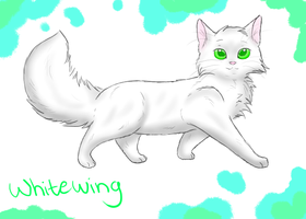 Whitewing wallpaper by Jayfeather2013