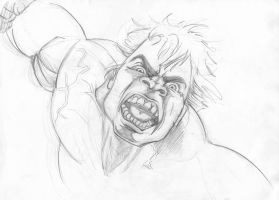 Hulk by Theamat