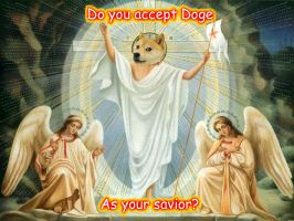 Doge is Life by wowstahpplz