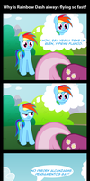 Why Rainbow Dash Is Flying So Fast (traducido) by innuendo88