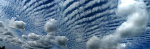 Cloud Pano by Lectrichead