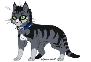 Cat Design Commission 2 by Kasara-Designs