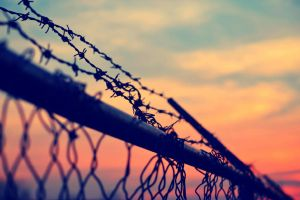Barbed Wire by creeperdude