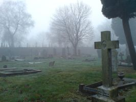Foggy at the cemetery 46 by rudeturk