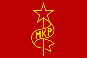 Flag of the Hungarian Communist Party by ShitAllOverHumanity