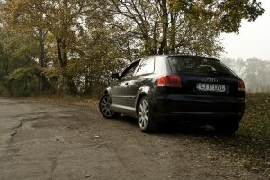 Audi A3 by canaris1780