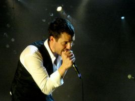 Brandon Flowers by weebobeebo