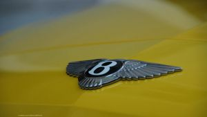 Bentley Continental Flying Spur by ShadowPhotography