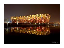 Birds Nest / Beijing Olympic Park by SteDreLa