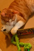 Illidan's a toy hog by BioVenomImagery