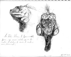Green Iguana Heads by Counterdraw