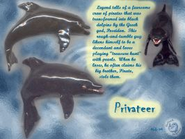 Delicate Dolphins: Privateer by Rebmakash