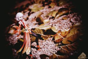 Winter's Flower by Noble-beast-photo