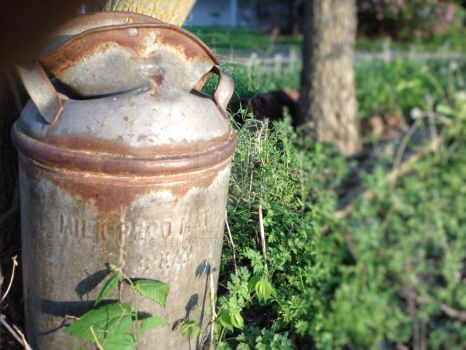 Old Milk Can by jellygator