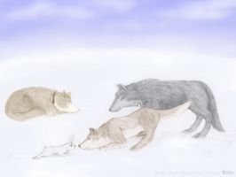 Wolfs Rain Snowday by white-wings01