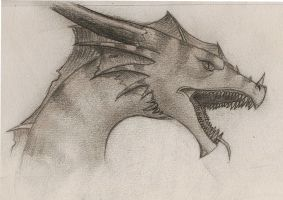 Dragon Sketch 1 by DarkPhoenixDragon17