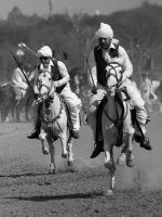Tent Pegging - 14 by InayatShah