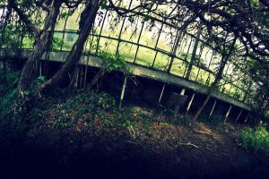 abandoned glasshouses VIII by WilhelmBielawa