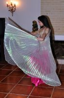 Wings Belly Dance 02 Stock by LoryenZeytin