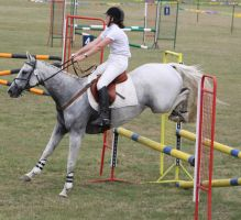 STOCK Showjumping 465 by aussiegal7