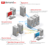 News On Demand Diagram by BlakliteGraphics
