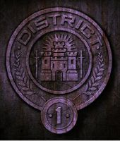 District 1 Seal by CaptainIggy
