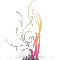 colored floral line art vector by cgvector