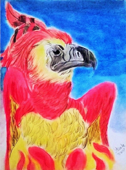 Fawkes pastel drawing. by SulaimanDoodle