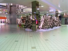 Chritmas in the mall 13 by doveangel123