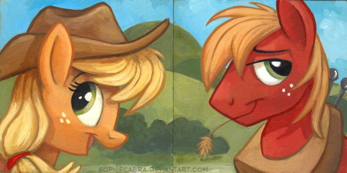 Square Series - Applejack and Big Mac by SpainFischer