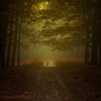 -Alchymistas secret path- by Janek-Sedlar